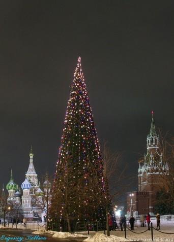 Билеты на ёлку в кремль